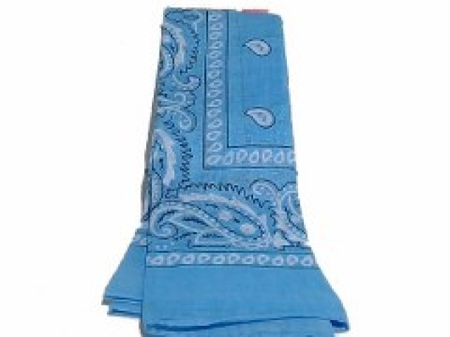 Bandana Light Blue